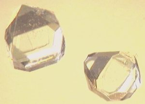 Xylitol, seen here in crystal form, is a sugar alcohol often used as a sweetener in chewing gum
