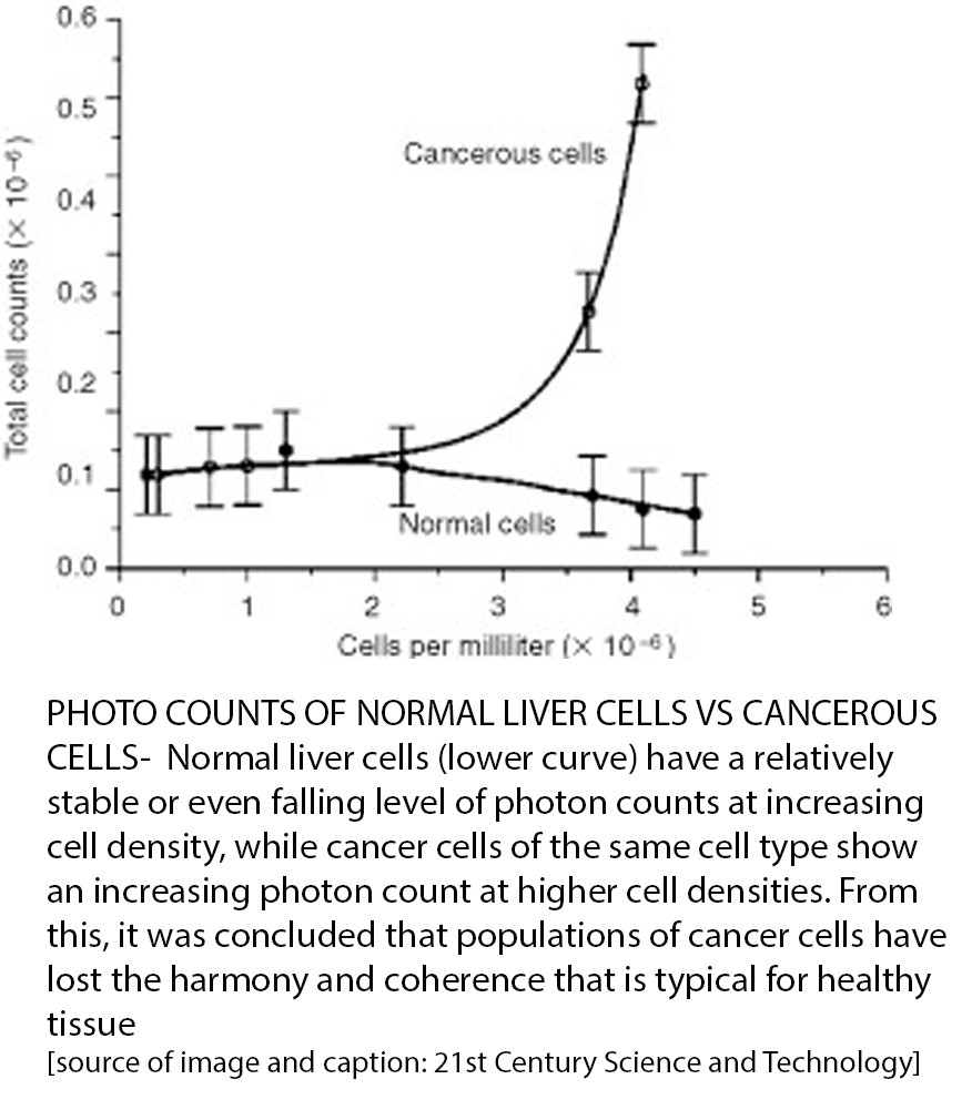 Photo counts of normal liver cells versus cancerous cells